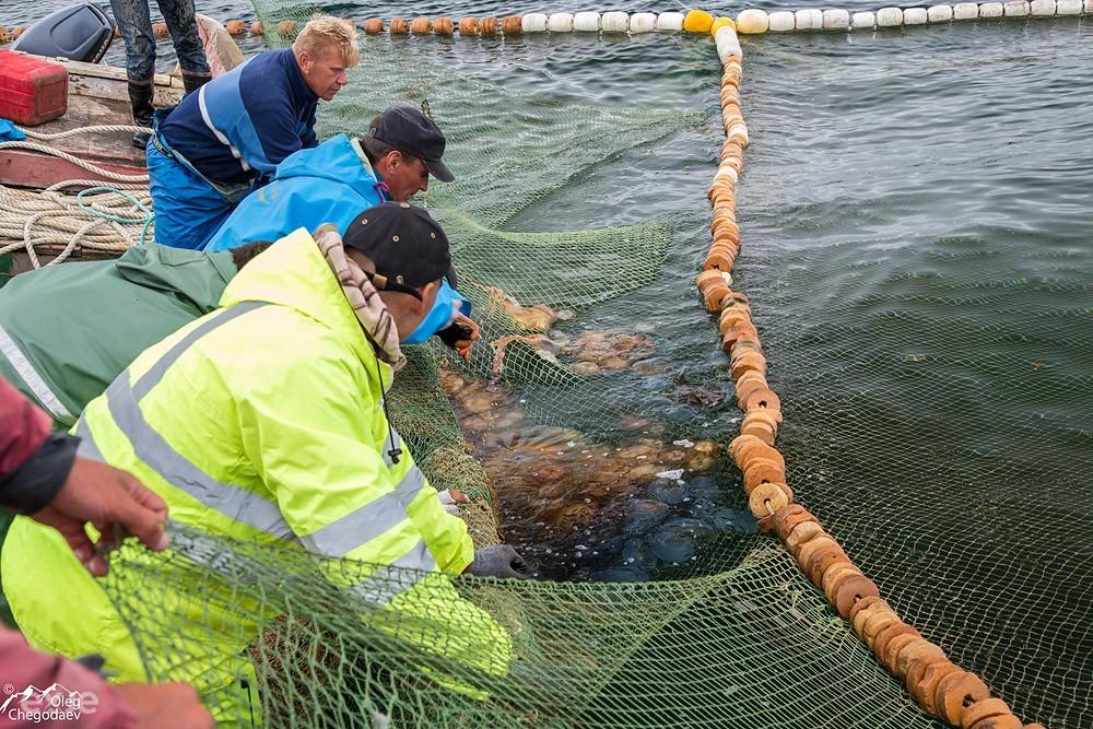 Рыбаки острова Итуруп