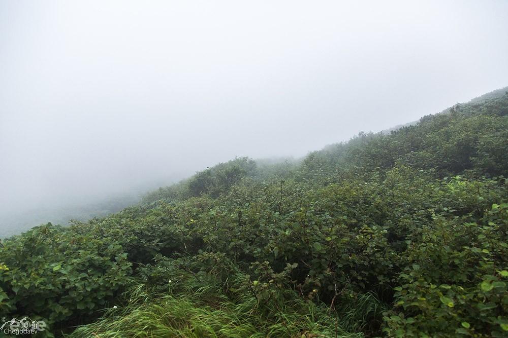 Хребет Богатырь в тумане