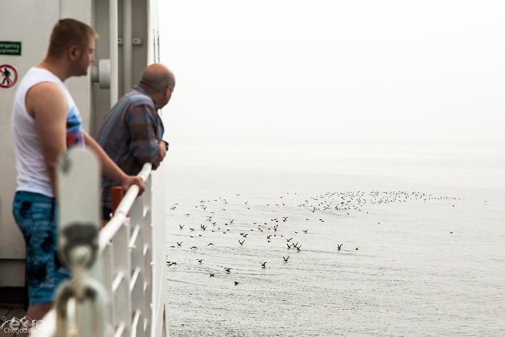 Охотское море. Туман