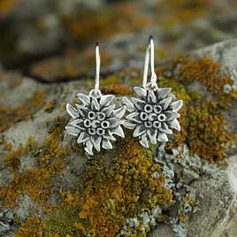 Серьги серебряные эдельвейсы