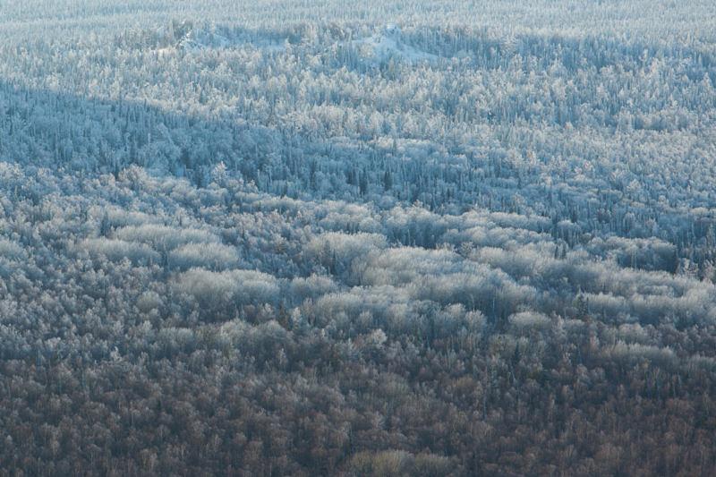 Лес Юрюзаньской долине