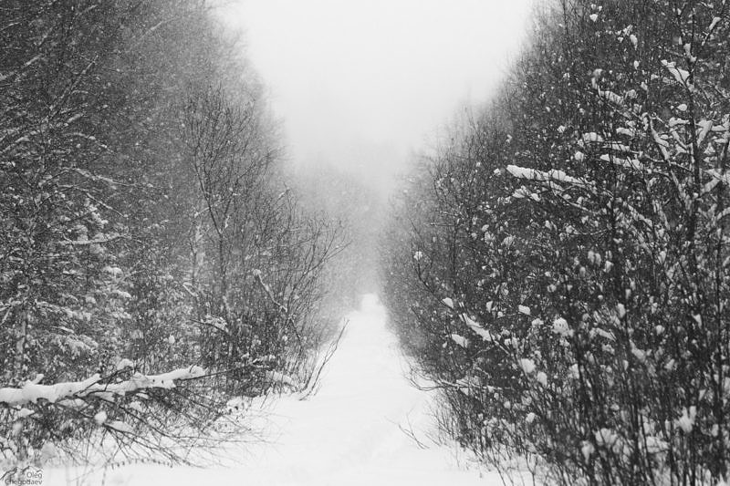 Старая дорога пересекающая хребет Нургуш
