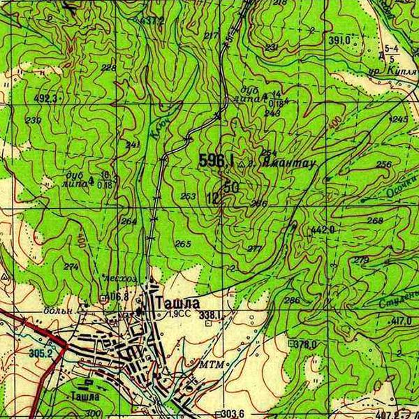 N-40-125 г. Ямантау (596,1 м)
