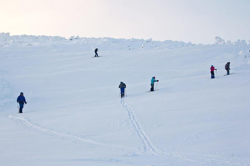 Угадайте у кого лыжи с камусом