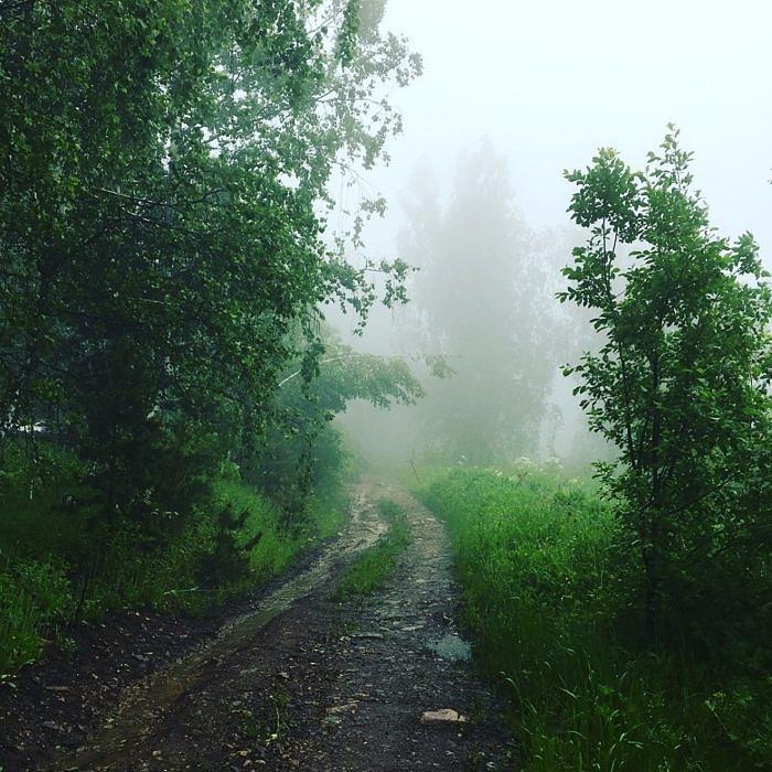 Дорога на хребет Шатак