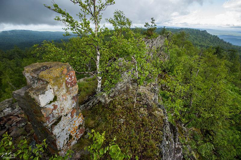 Вершина горы Катушка 1043