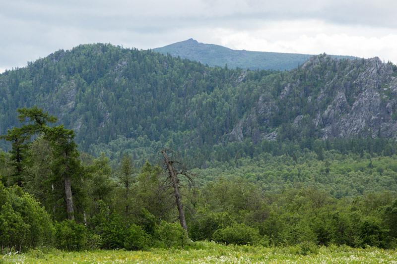 Хребет Шатак с севера
