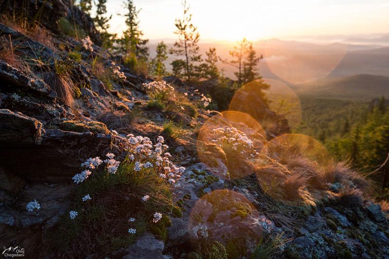 Летний рассвет на Урале