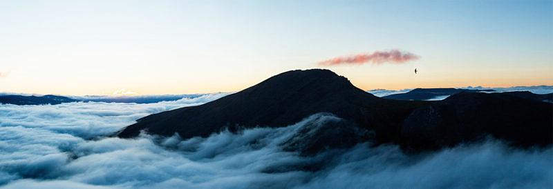 Гора Черная 1243,1 и птица