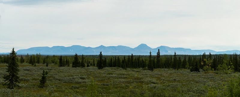 Вид с железной дорони на Полярный Урал и гору Пайер