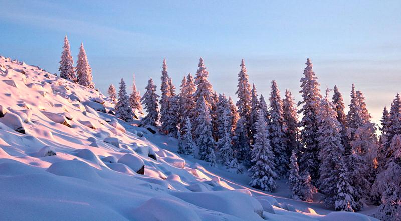 Покрытый снегом курум