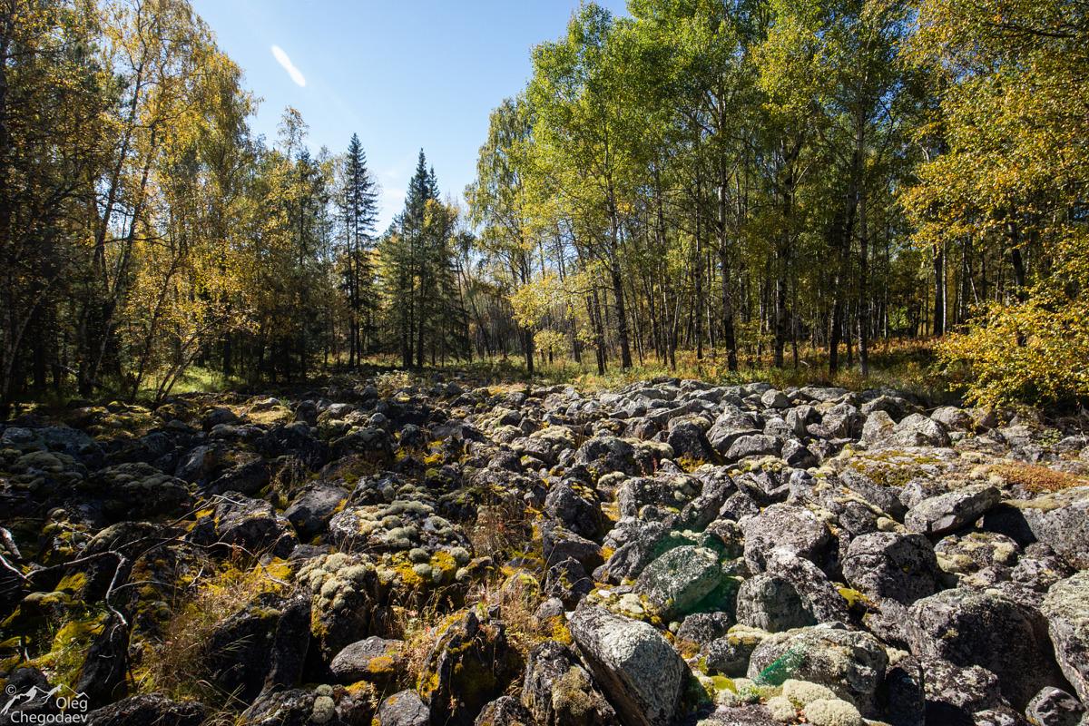 """Тыгынская каменная река у своего """"устья"""""""