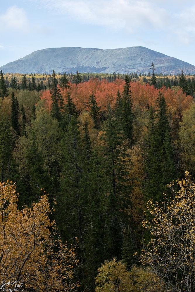 Гора Ямантау с хребта Машак