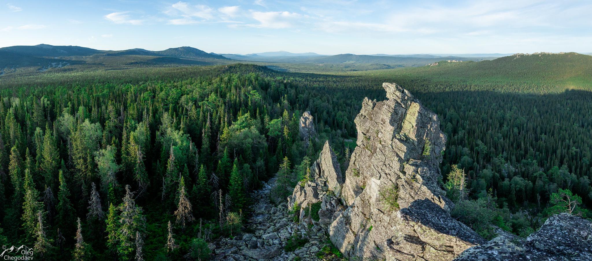 Вид на север с вершины 1079 хр. Осиновый