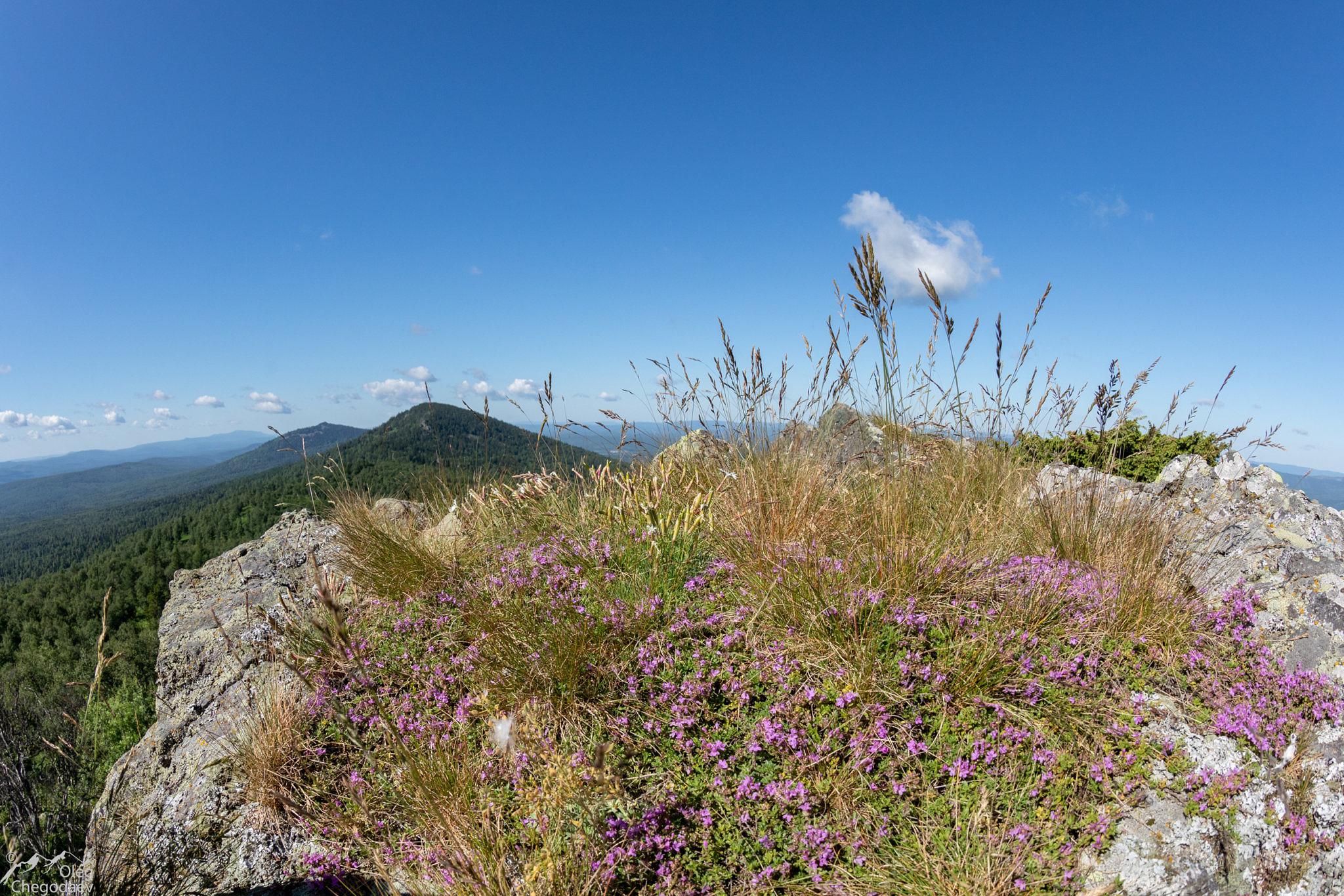 Гора Торнаташ, вершина