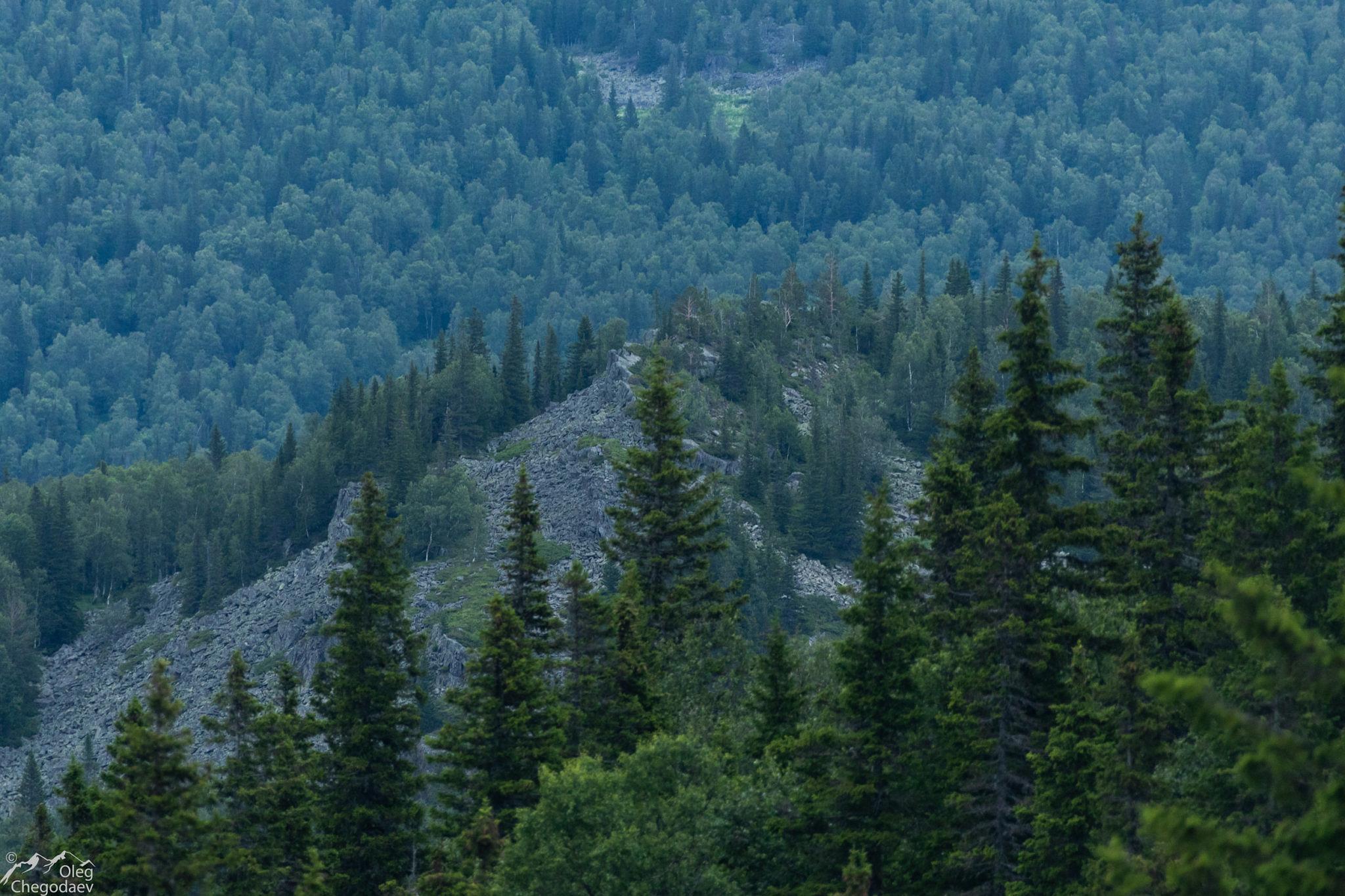 Гора Сычина