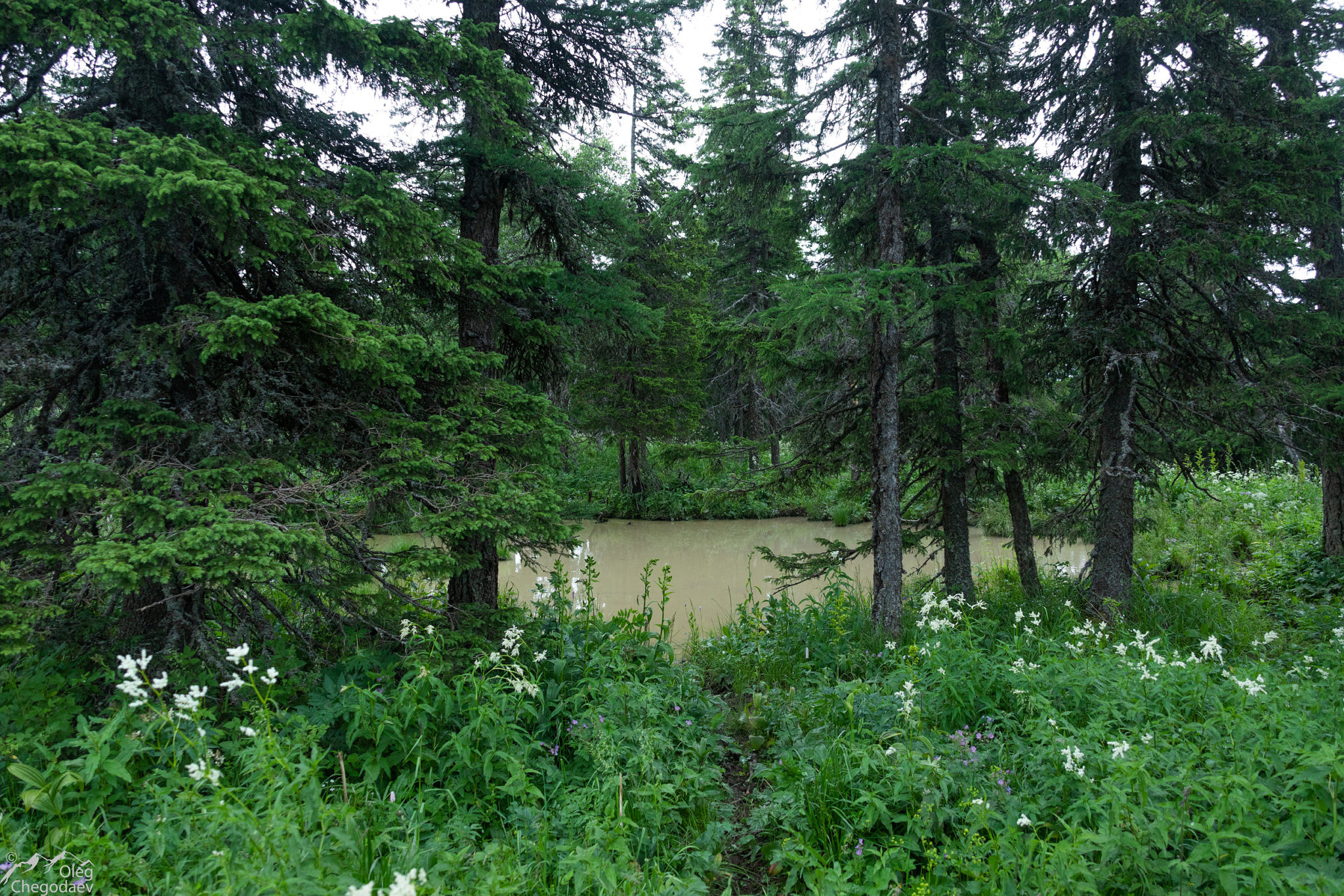 Озеро на хребте Ягодный