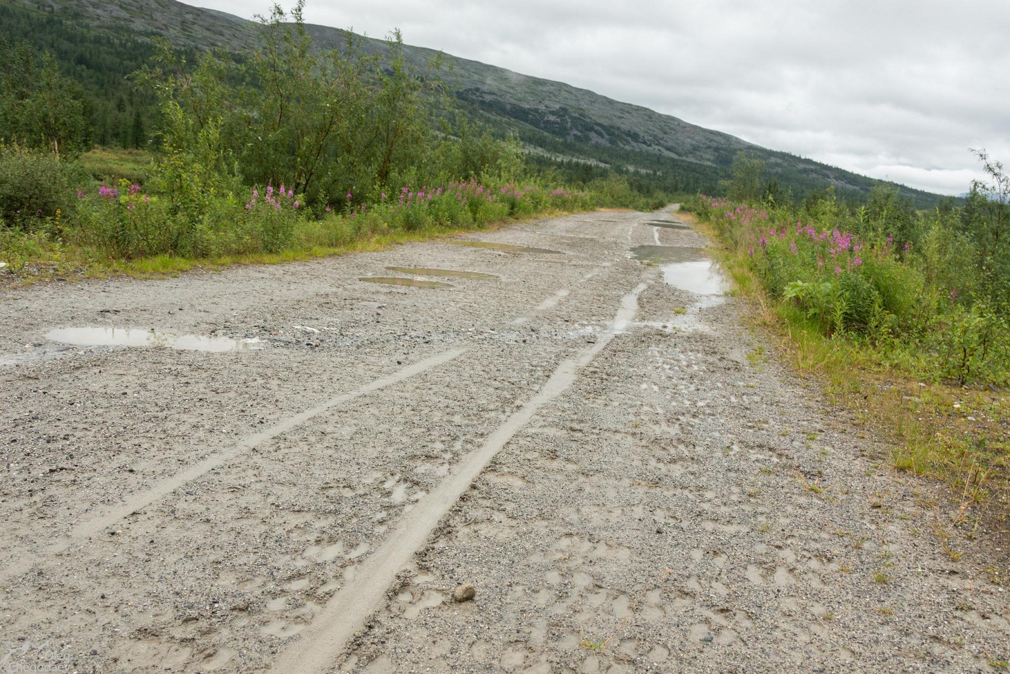 След от полозьев нарт на дороге