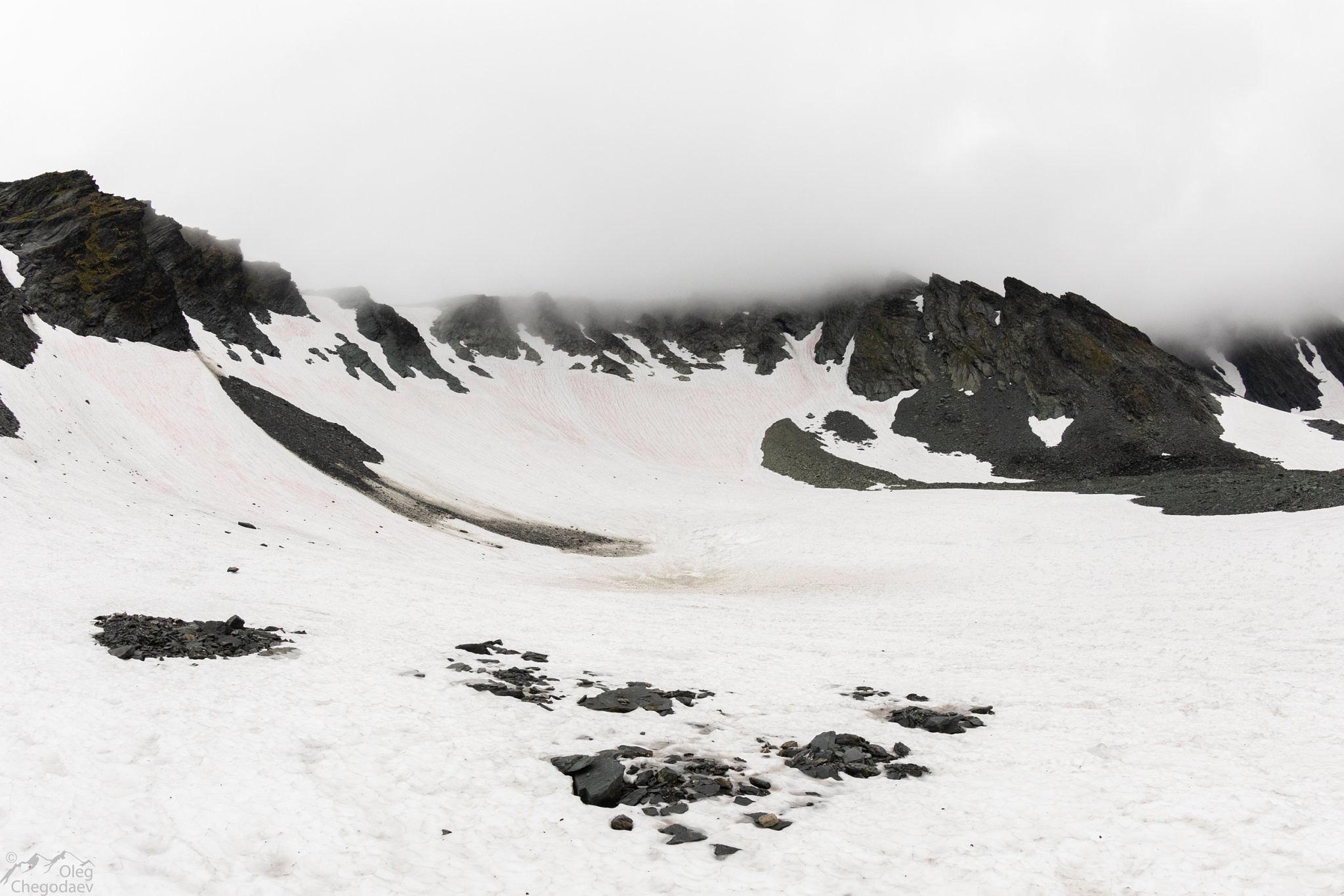 Ледник Кулика