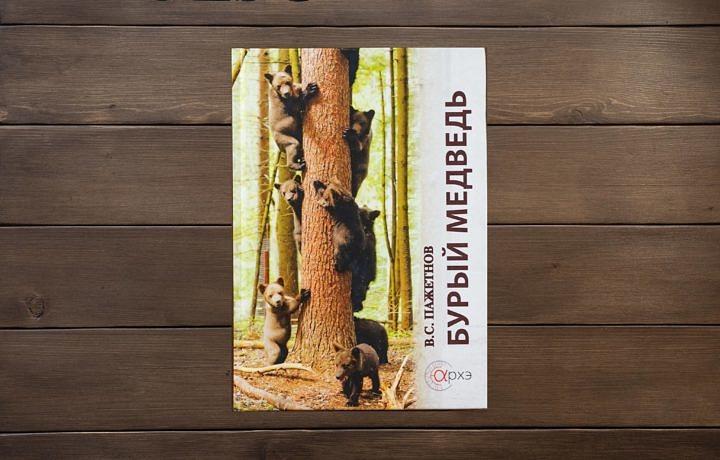 Бурый Медведь - пажетнов