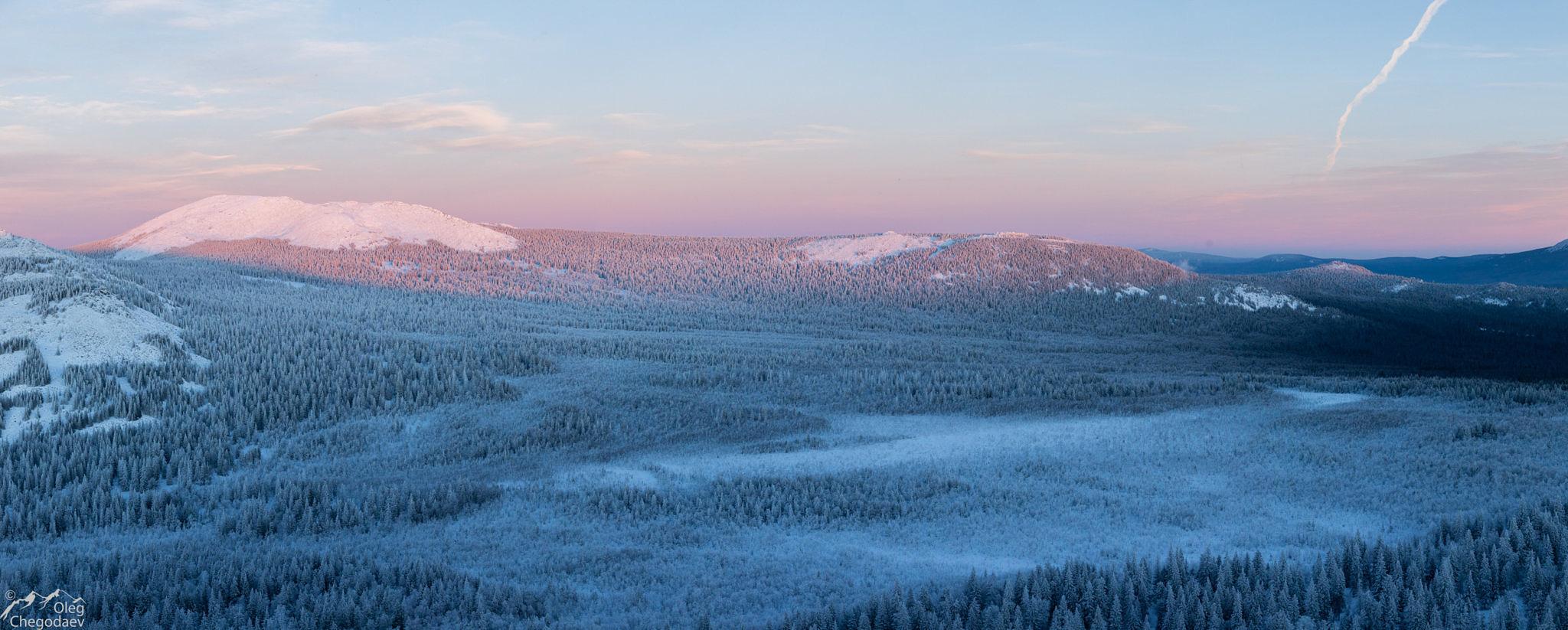 Хребет Зигальга, верховое болото в седловине