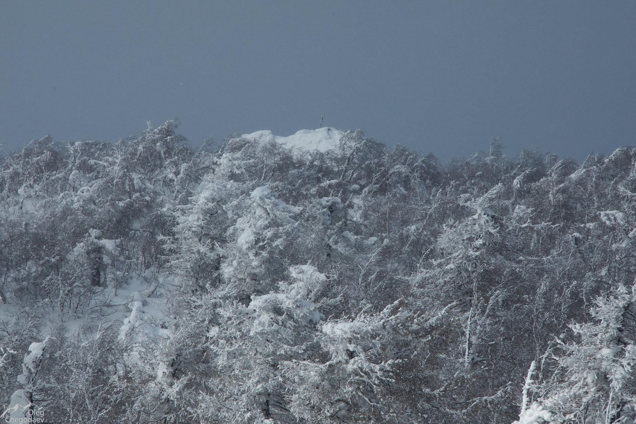 Одна из вершин горы Масим