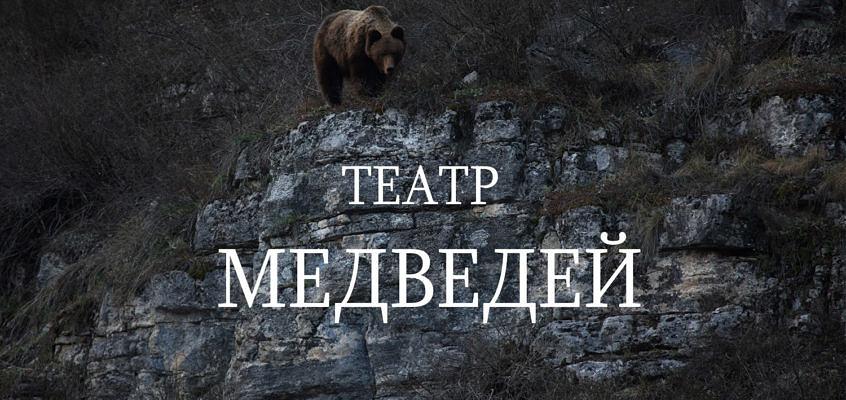 Медвежий театр нацпарка Башкирия – наблюдение бурого медведя в естественной среде обитания.