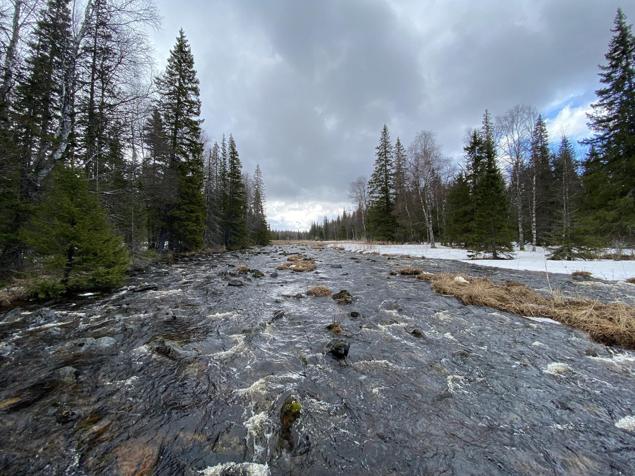 река Тюлюк в среднем течении
